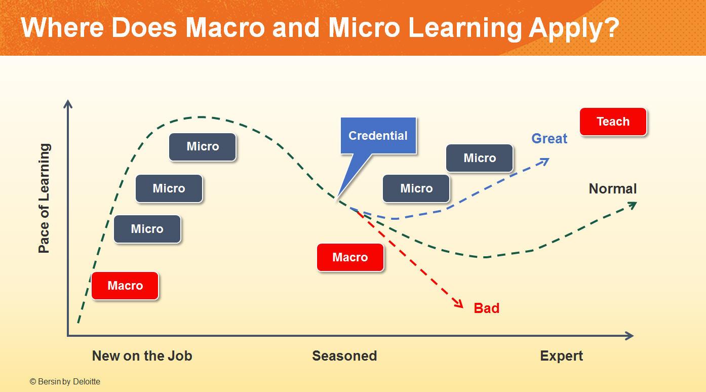 Macro vs. Micro Learning